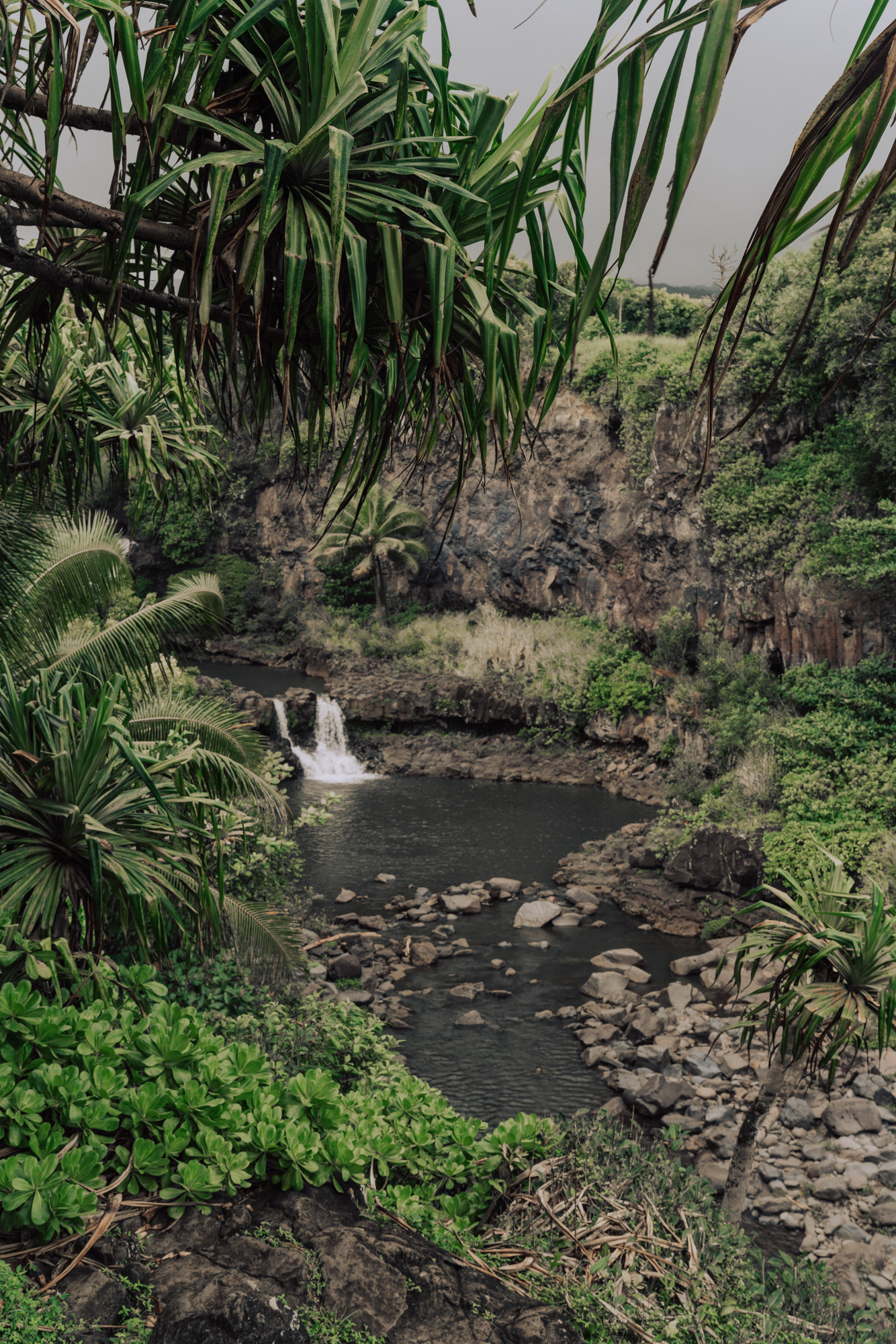 Water fall photo in a tropical setting with palm trees