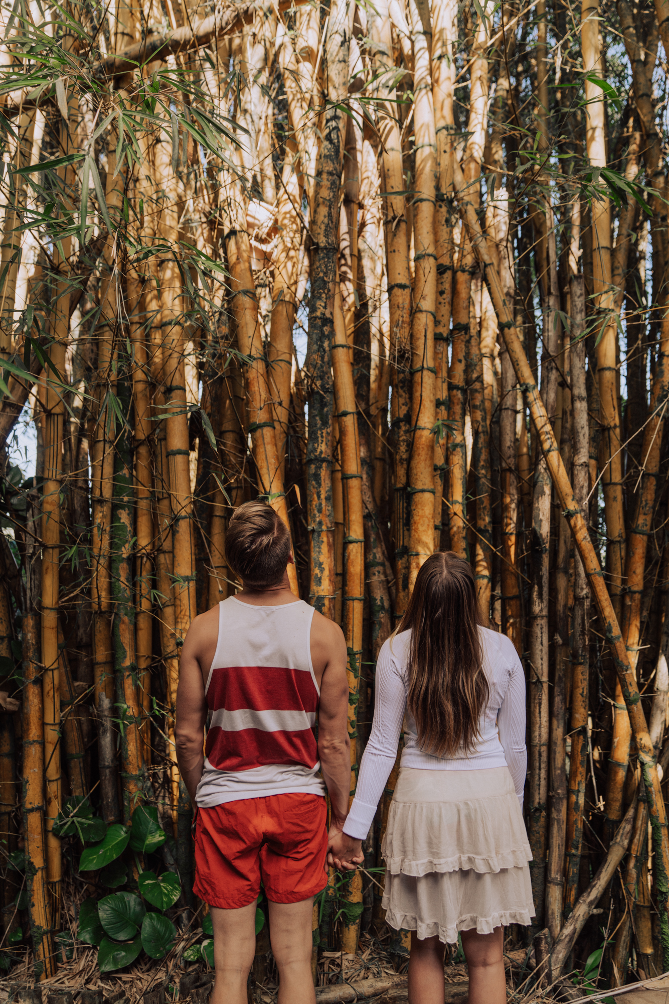 a young couple holding hands looking up at yellow bamboo shoots.