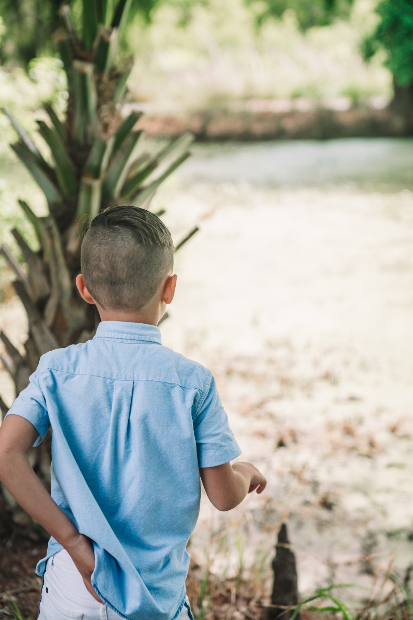 a little boy in a blue shirt looks out at the swamp landscape.