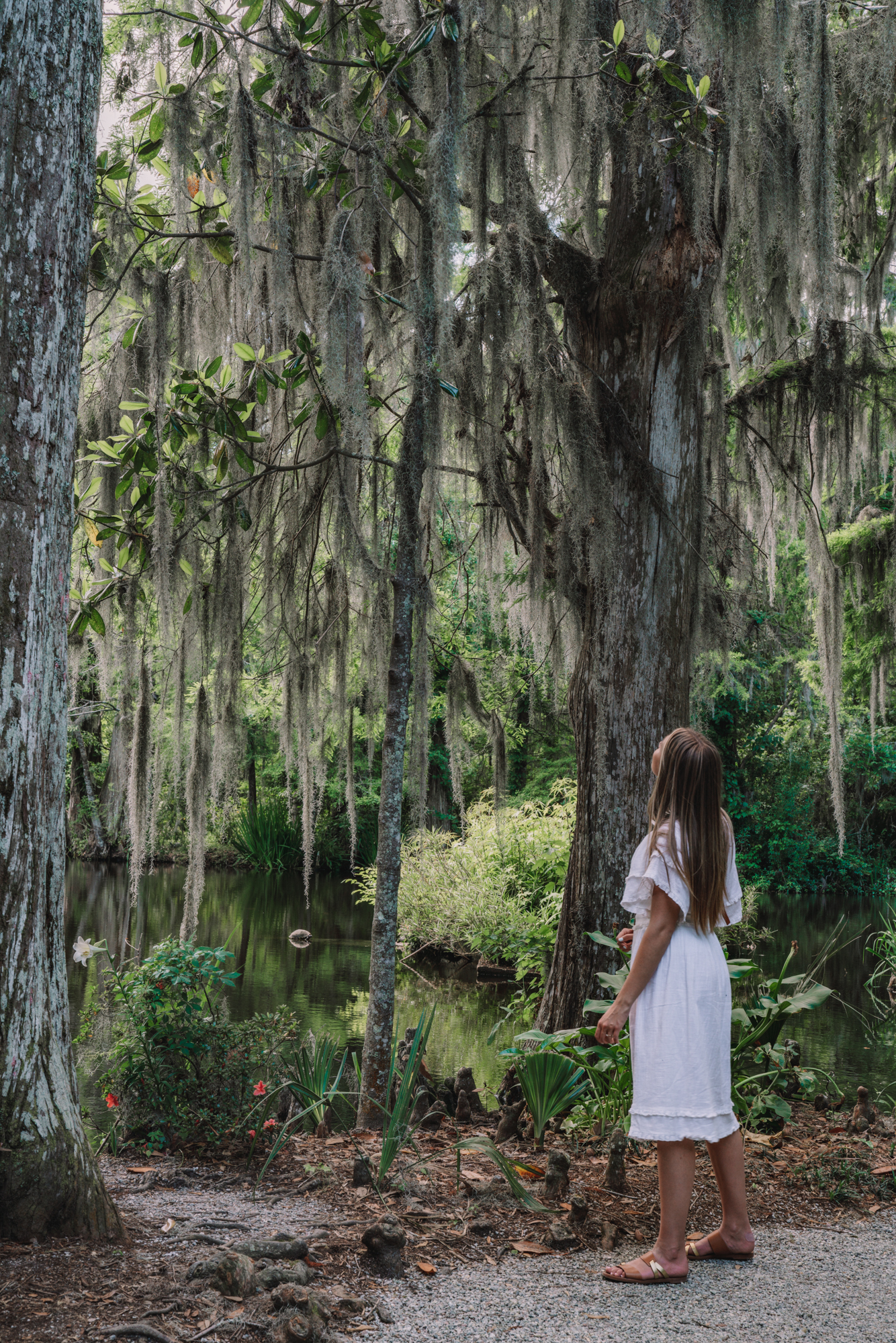 Romantic Things To Do in Charleston, SC - Magnolia Gardens